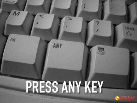 Foto divertente: Press ANY key